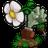 植物大�鸾┦�冰雪版