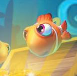 鱼丸游戏电脑最新版