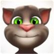 会说话的汤姆猫4游戏