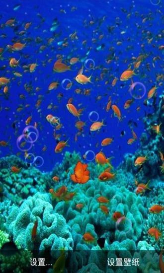 3d海底世界真魚動態手機壁紙 v6.5 安卓版