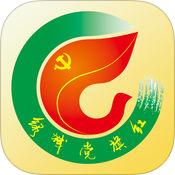 南宁市绿城党旗红信息平台