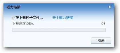 迅雷专用磁力链接前缀软件 v1.0 绿色免费版 2