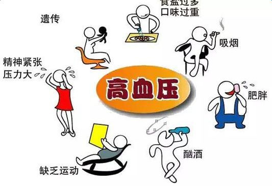 高血压的治疗与饮食文档
