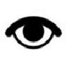 眼保健操音乐MP3(2008修订版附眼保健操图解)