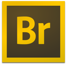 Adobe Bridge2020最新版