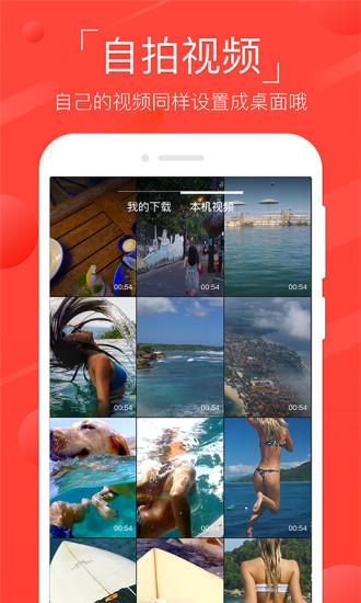火萤视频壁纸app v7.4.0 安卓最新版 0