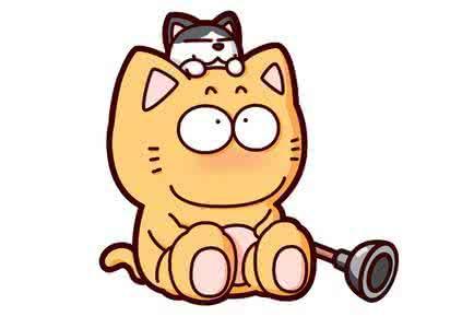 皮揣子猫动态图gif表情包图片