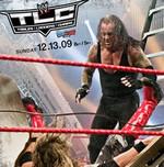 WWE2009(世界职业摔跤2009)
