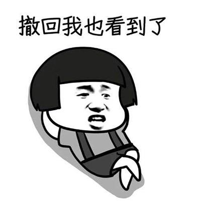 首页 联络聊天 qq表情包  → 撤回消息全套qq表情包   撤回消息表情包图片