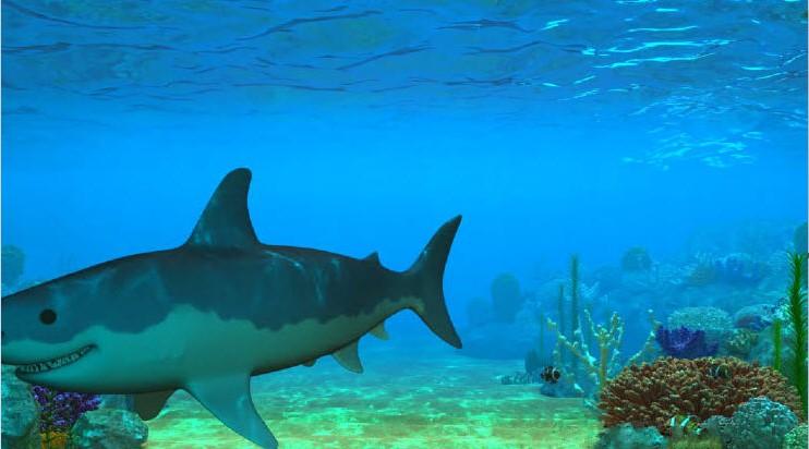 3d海底世界动态桌面