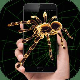 蜘蛛恶作剧(手机壁纸)