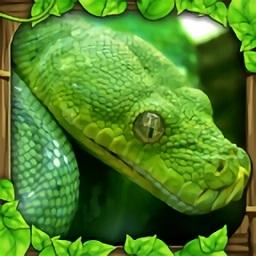 蟒蛇模擬器中文破解版(snake sim)