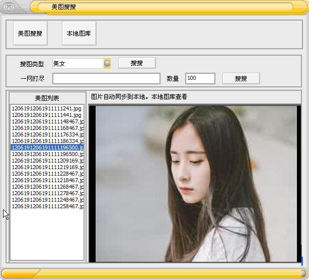 网络图片采集大师 v1.0 绿色版 0