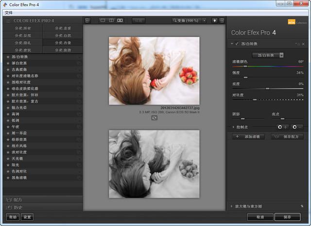 PS插件Nik Collection v1.2.11 中文版 0