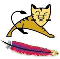 tomcat软件