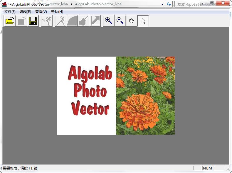 AlgoLab Photo Vector破解版