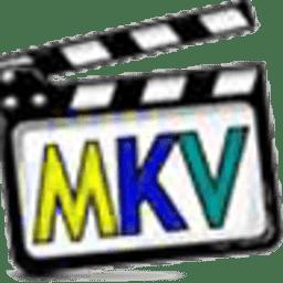 mkv解码器工具(cccp)