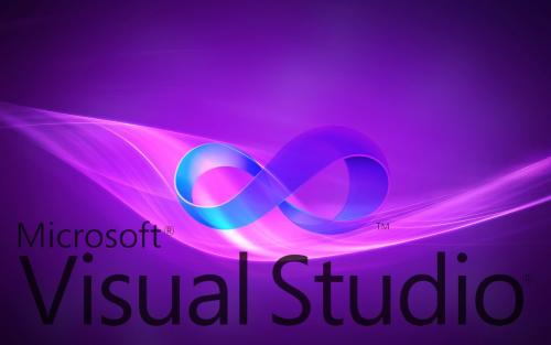 wise for visual studio.net