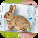 兔子在手机可爱的笑话app