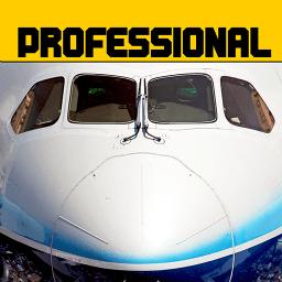 模拟飞行787中文破解版