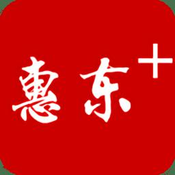 惠东十软件