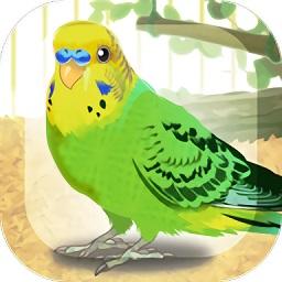 治愈的鹦鹉养成游戏(parakeet)