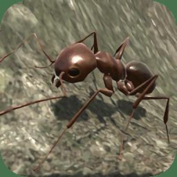 蚂蚁模拟3d游戏