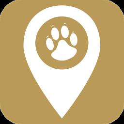 宠物智能伴侣手机版