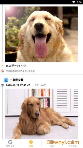 寵物日記手機版 v1.0.6 安卓版 0