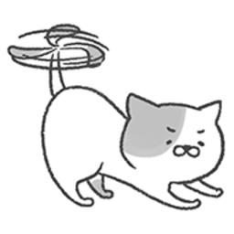 猫咪直升机手机版