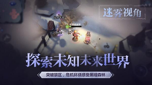 迷雾求生中文版