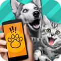 宠物对话交流器软件(pet translator)