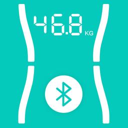 健康体脂秤