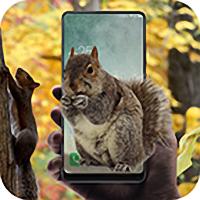 松鼠恶作剧app