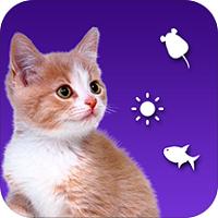 逗猫神器猫语翻译手机版
