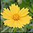 neat image图片降噪软件