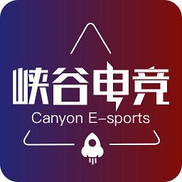 峡谷电竞软件