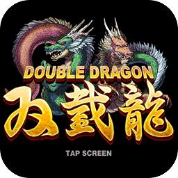 双截龙2游戏v1.00.1 安卓版