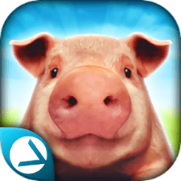 抖音模拟猪的游戏(pig simulator)