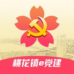 桃花镇e党建软件