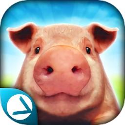 猪猪模拟器之猪的一生(pigsimulator)