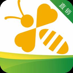蜜蜂银行手机版