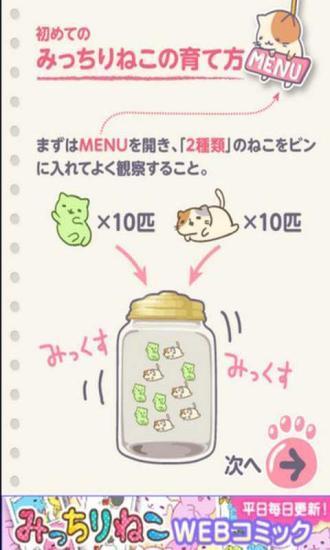 萌猫养成罐2汉化版 v1.0.1 安卓版