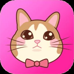 猫语翻译手机版