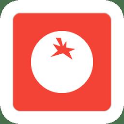 轻番茄软件