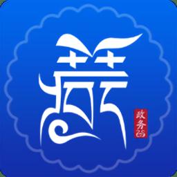 西藏政务软件