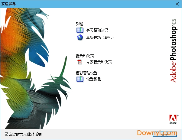 Adobe PhotoShop CS 8.01精简中文绿色版 免安装版 0