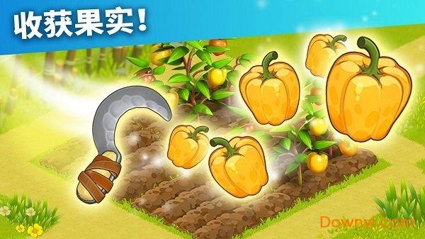 家庭岛苹果修改版