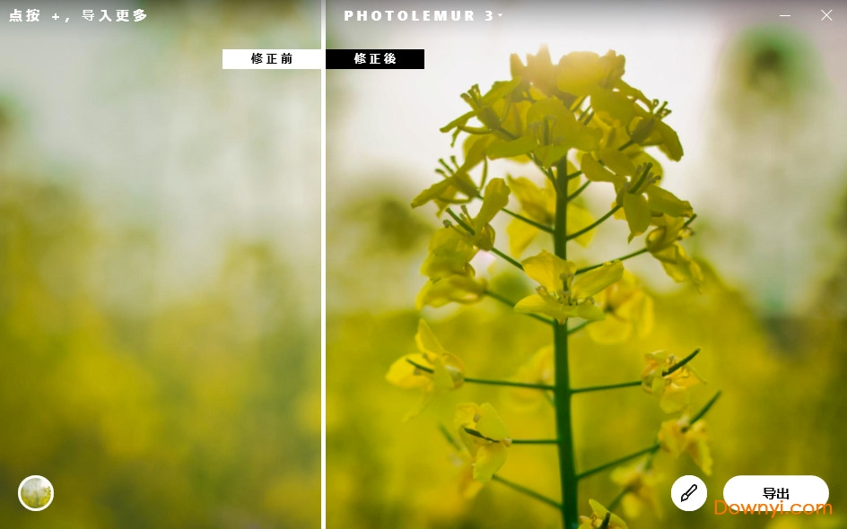 photolemur 3中文版