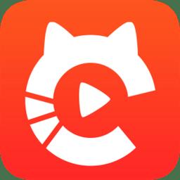 大懒猫社区手机版
